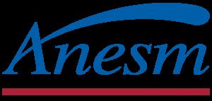 logo anesm